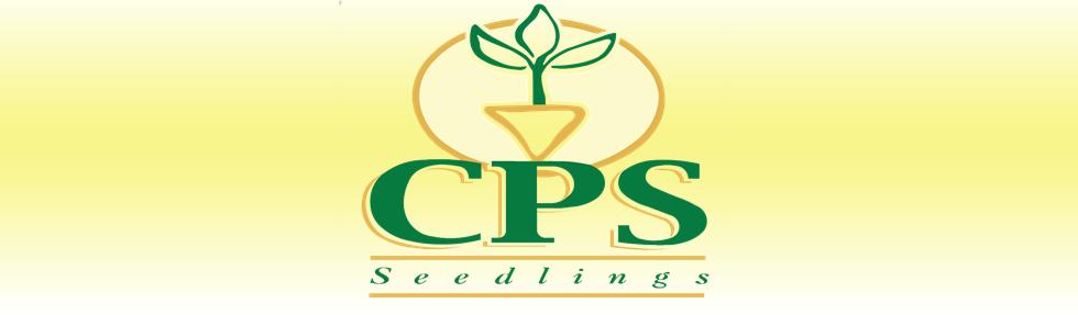 CPS Seedlings